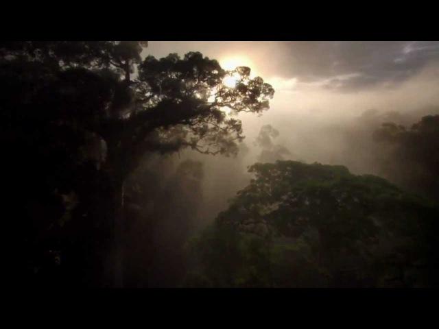 Красота нашей планеты...720.