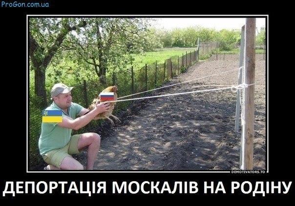 Родственники и адвокат арестованного марионетками Кремля замглавы Меджлиса пятый день не могут его найти - Цензор.НЕТ 8068