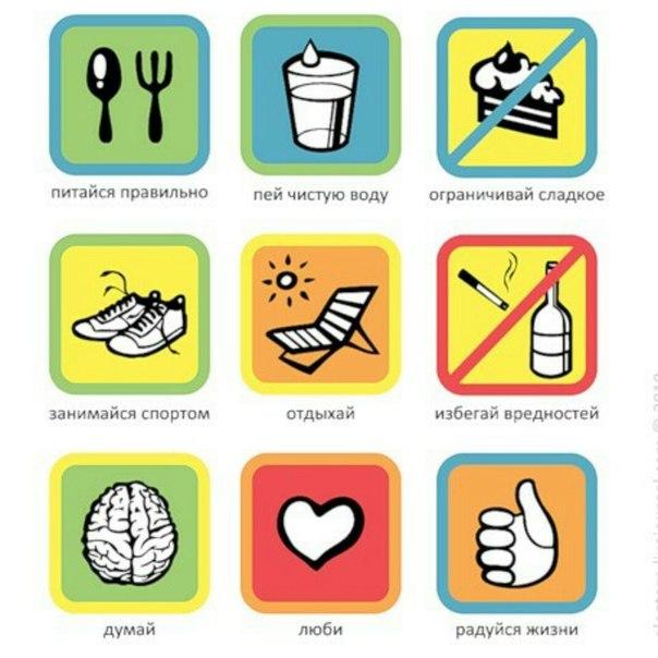 принципы пп правильное питание для похудения