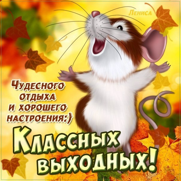 http://cs624424.vk.me/v624424955/325c/My3oJX6Q21s.jpg