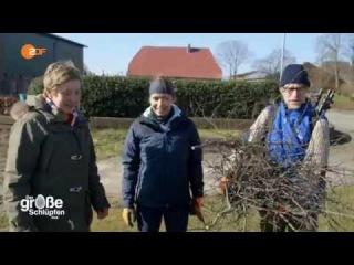 Магдалена Нойнер делает гнездо для аиста Петера:)
