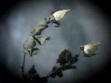 Юрий Шатунов - Белые розы (официальный клип) 1989