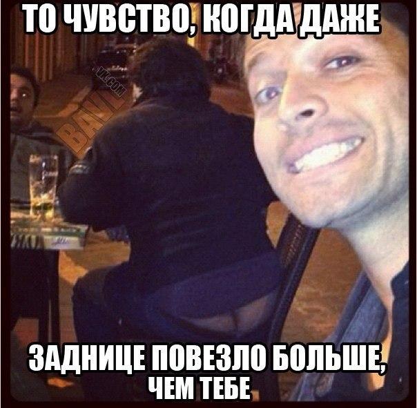Шапка Миши Коллинза