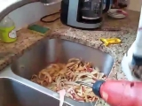 Мужик на кухне 👍🏻😎