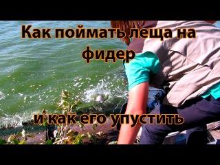 НАПК повторно вызвало Лещенко для ознакомления с протоколом об админнарушении - Цензор.НЕТ 9120