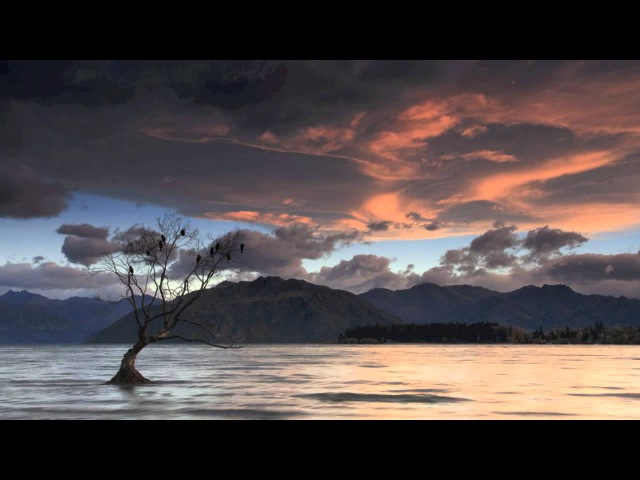 Nisi Dominus, RV 608 (Cum dederit) - Antonio Vivaldi - Soprano: Sandrine Piau