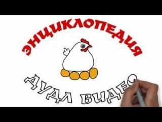 Как создавать рисованные дудл (doodle) видео презентации с помощью программы Sparkol