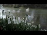 Антонио Вивальди - Времена года - Весна ч.1 . - Antonio Vivaldi - spring 1.Allegro