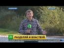 Белорусы приступили к работам по демаркации границы с Украиной