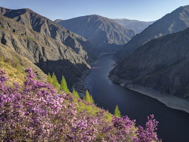Сибирь, Саяно-Шушенский заповедник, река Енисей
