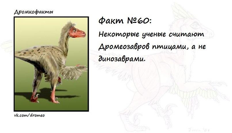 https://pp.vk.me/c624426/v624426874/10d90/hxPJZAlK_14.jpg