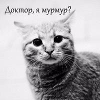 Оксана Синтия