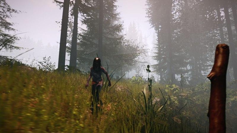 The Forest  (v 0.19) 2015 скачать торрент