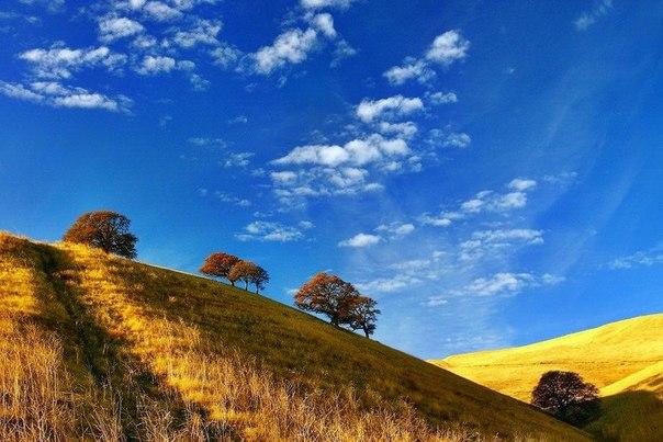 Вас природа красивые места мысли