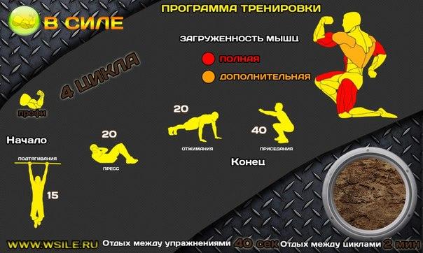 Круговая тренировка в зале для похудения