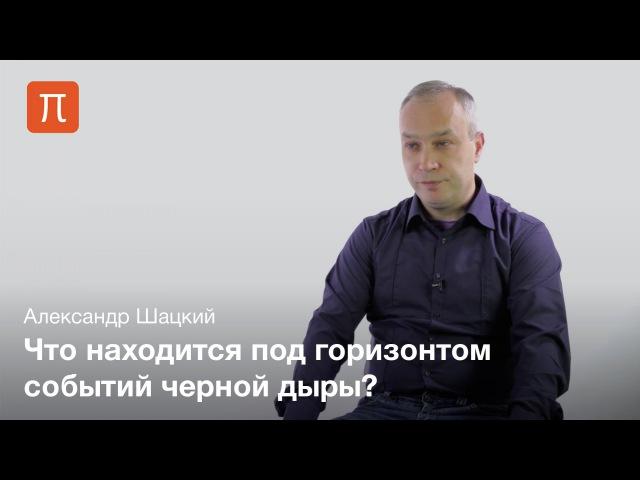 Черные дыры и кротовые норы Александр Шацкий