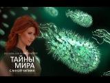 Тайны мира с Анной Чапман. Вирусы. Иная жизнь (17.09.2015) HD 1080р