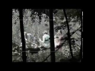 Брачное чтиво 3 сезон 19 серия Секс В Лесу 18+