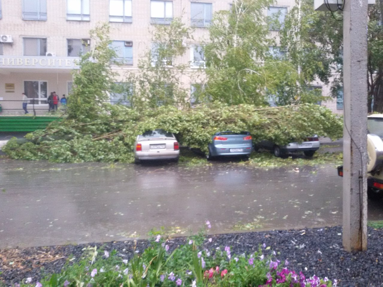 Апокалипсис? В Таганроге штормовой ветер со скоростью 36 м/c валит деревья, рвет линии электропередач, дождь затопил улицы. 33 ФОТО