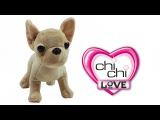 Собачка чихуахуа ЧиЧи (Chi Chi Love) для девочек. Принцесса ЧиЧи
