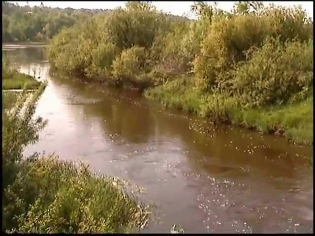 Все реки куда-то текут...