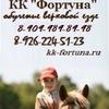 ВЕРХОВАЯ ЕЗДА , лошади, конный клуб Ромашково