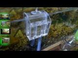 Система слива воды из аквариума своими руками.
