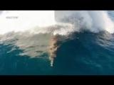 Стив Ирвин. В защиту дикой природы (12 серия из 26) / Steve Irwin's. Wildlife Warriors / 2011 / ПО / SATRip