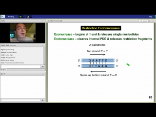 3rd Lecture-Kaplan Step 1 CA-Biochemistry Medical Genetics-Turco-Jan 8, 2014