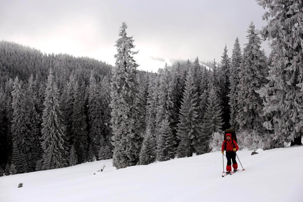 Льоша розсікає на лижах