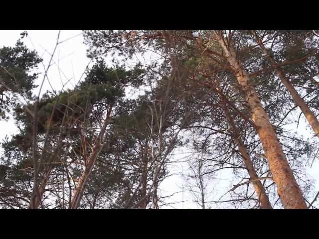 Osan Yöstä - Virmalised (Északi fény, Revontulet, Northern Lights) feat. Aapo Ilves