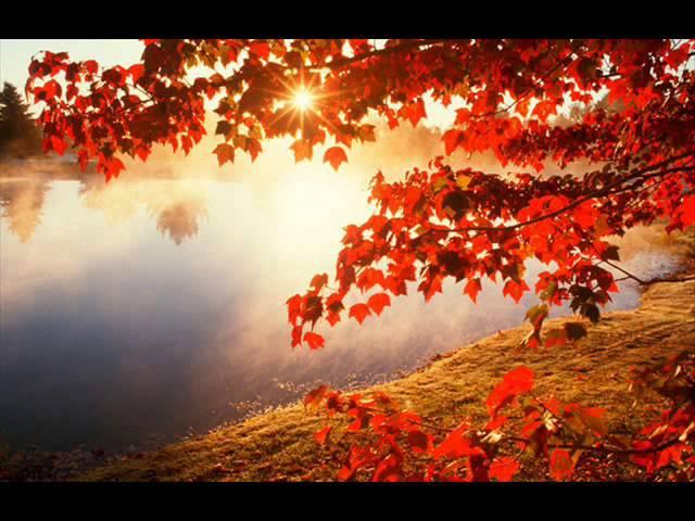 ВИА Фестиваль Листья жгут
