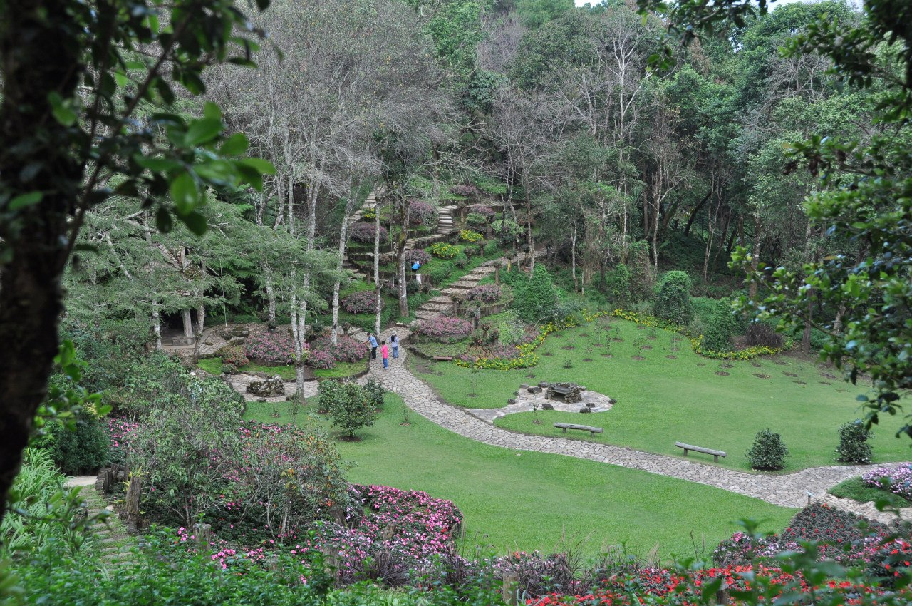 дендрарий Mae Fah Luang Arboretum