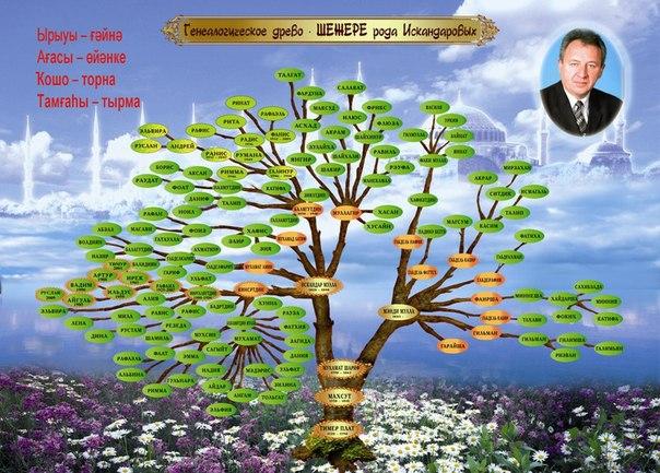 Шежере Дерево Образец Фото - фото 10