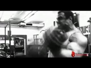 Bodybuilding motivation 2012 hd sorry i_m a monster [360p]