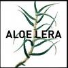 Блог о здоровье и красоте ALOE-LERA