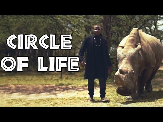 The Lion King - Circle of Life | Alex Boye ft. Alisha Popat Lemarti