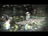 TRANCE) Готовность (Gal Abutbul &amp First Effect - Intruder (Original Mix))