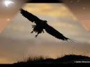 JAMES LAST El Condor Pasa