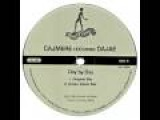 Cajmere feat Dajae - Day by Day (Green Velvet Mix)