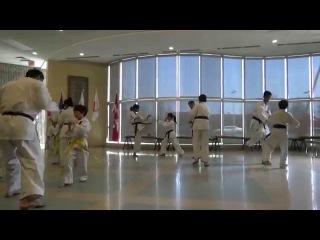 2015 Sakura Festival Irikumi Demo by Shudokan Family Karate Centre members