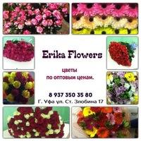 Мелкий оптом цветы дешево букеты живых цветов