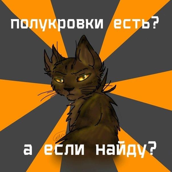 Коты воители все книги по порядку читать онлайн бесплатно - 1b80