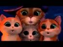 Кот в сапогах и три котёнка! Мультик.