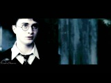 Harry and Hermione the chamber of secrets. TOTPC R3 1500+