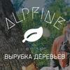 Обрезка и удаление деревьев в Москве