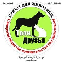 tvoi_druzya