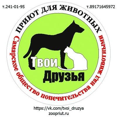 Самарский приют для животных