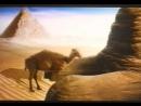 Старая реклама Camel