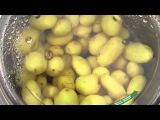 Картофелечистка  PPN-18M - Fimar